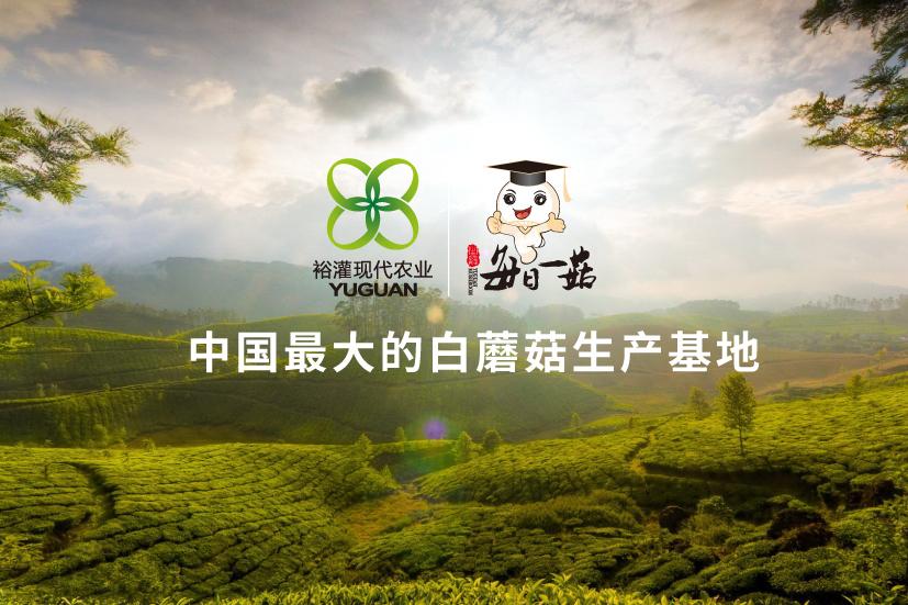 裕灌现代农业品牌策划