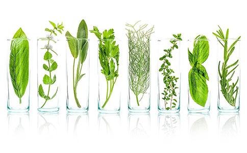 植物萃取精华